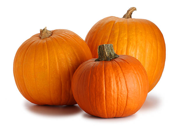 Three Pumpkins Isolated on White  pumpkin stock pictures, royalty-free photos & images