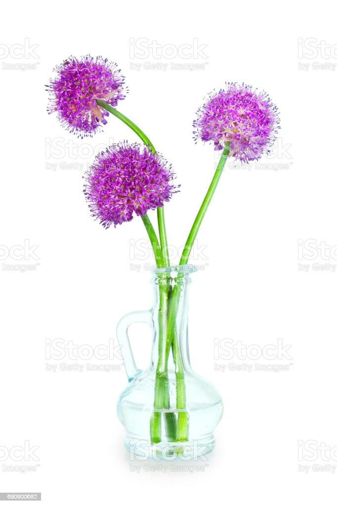 Drie paarse Allium bloemen in een decoratieve fles geïsoleerd op witte achtergrond foto