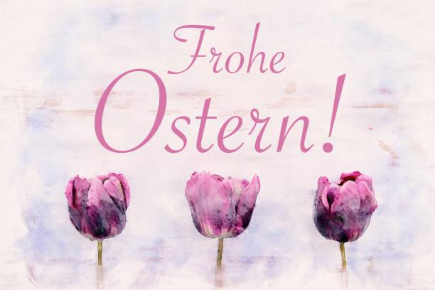 drei lila tulpen und deutsche wörter für fröhliches aaster in aquarellen - schöne osterbilder stock-fotos und bilder