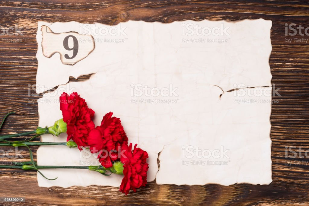 three red carnations on the sheet of old paper concept stock photo