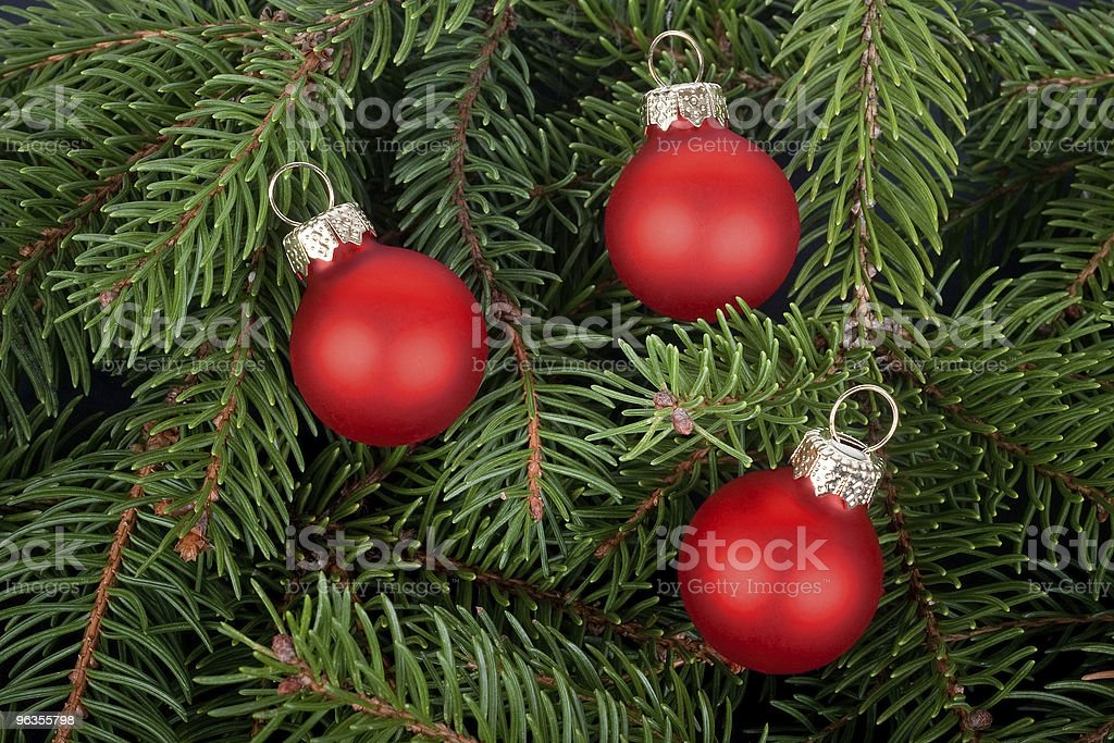 Three red Christmas tree balls on fir branches royalty-free stock photo