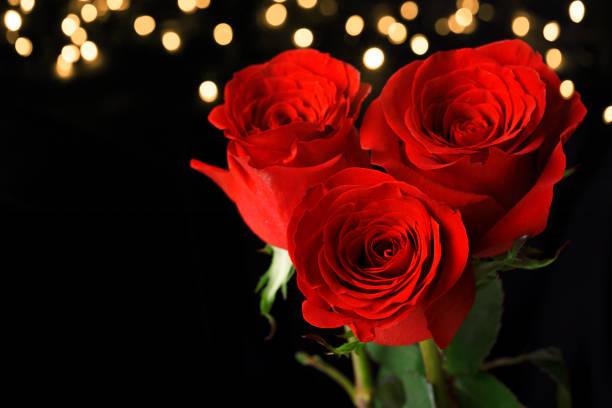 Three red roses on dark background picture id917574218?b=1&k=6&m=917574218&s=612x612&w=0&h=tsdfhiqxc9fwmv8qrpvwgw actjyxxumct8ymebevlg=