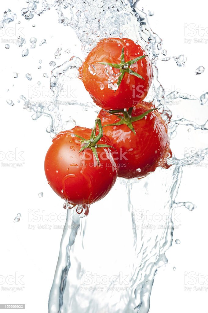 Three red tomatoes in clear running water on a white back royalty-free stock photo