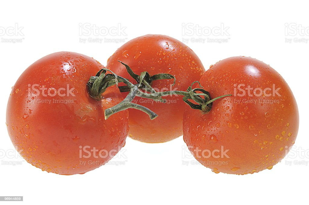 Three Red Tomatoes royalty-free stock photo