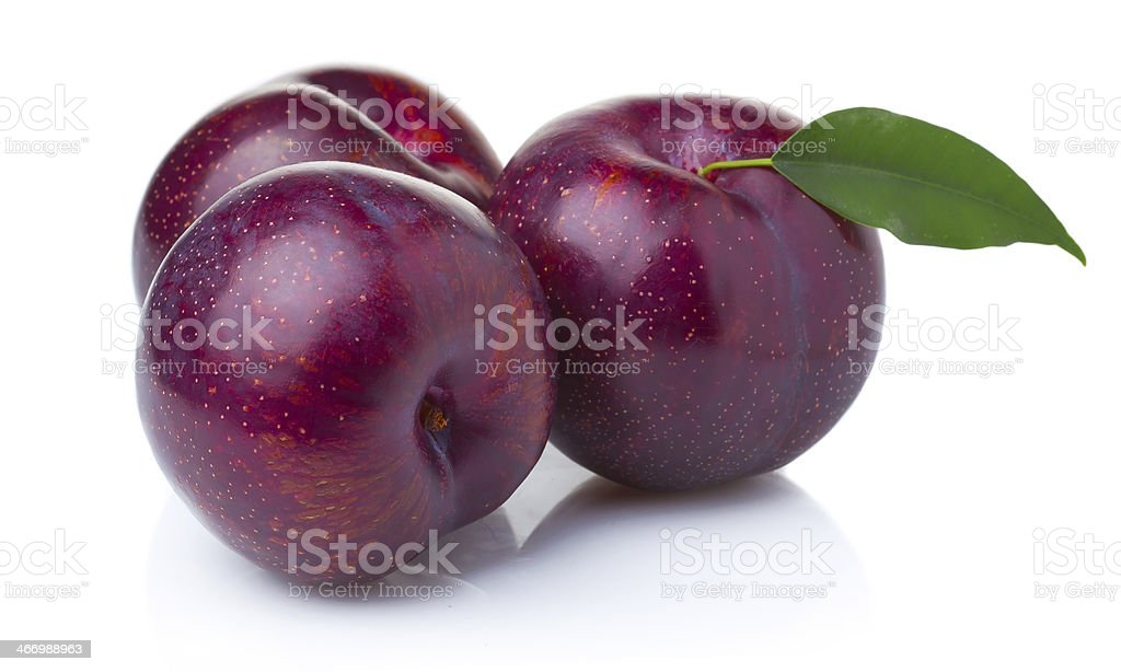 Three ripe purple plum fruits with green leaves isolated stock photo