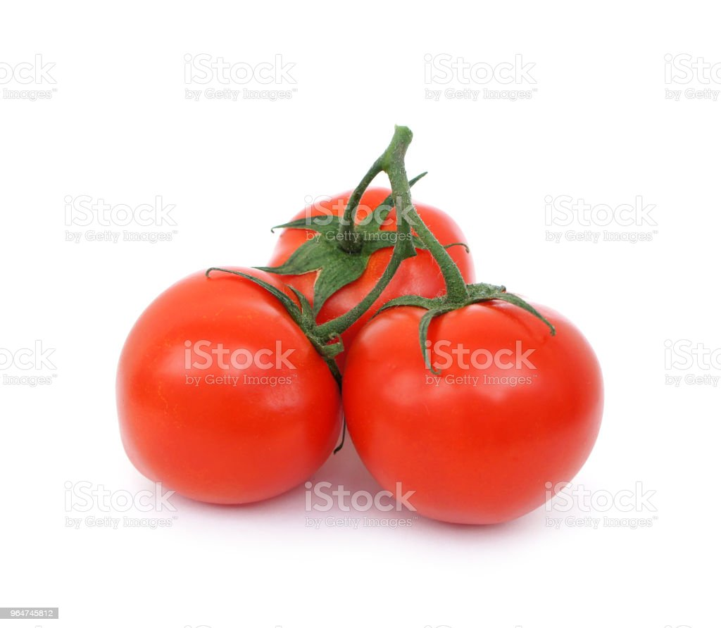Three ripe tomatoes with a sprig on white background. royalty-free stock photo