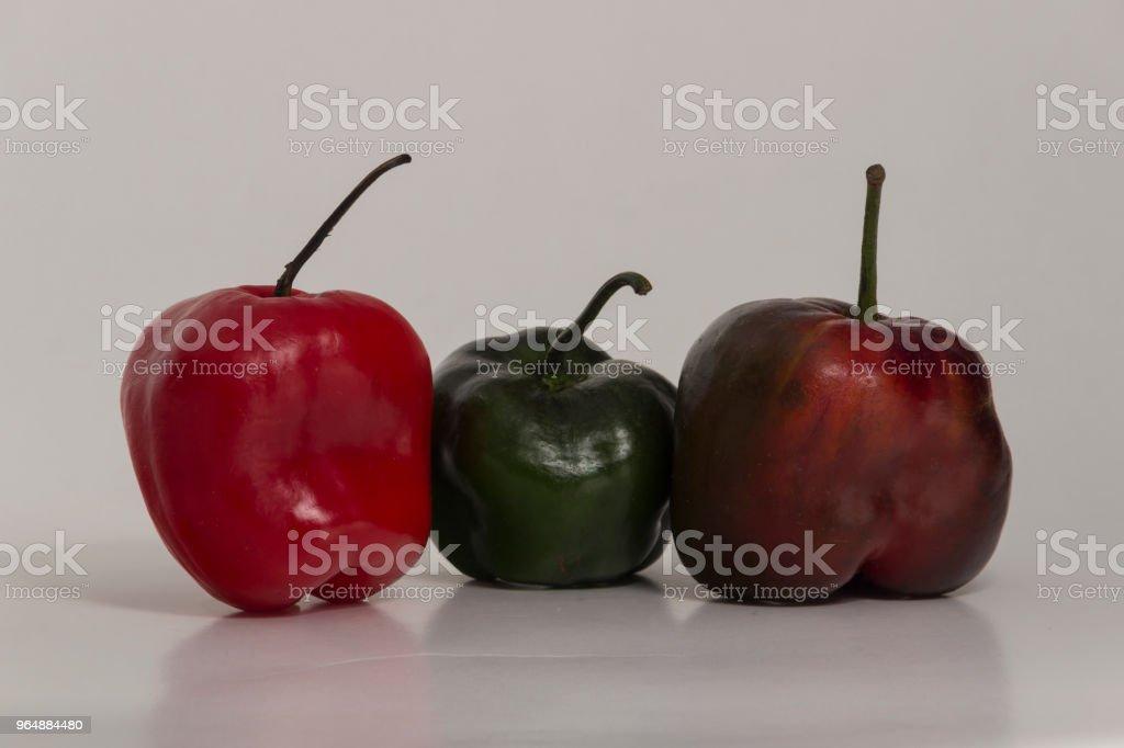 Three Rocoto - Hot pepper royalty-free stock photo