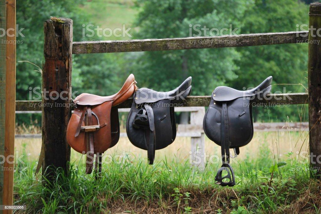 Three saddles stock photo