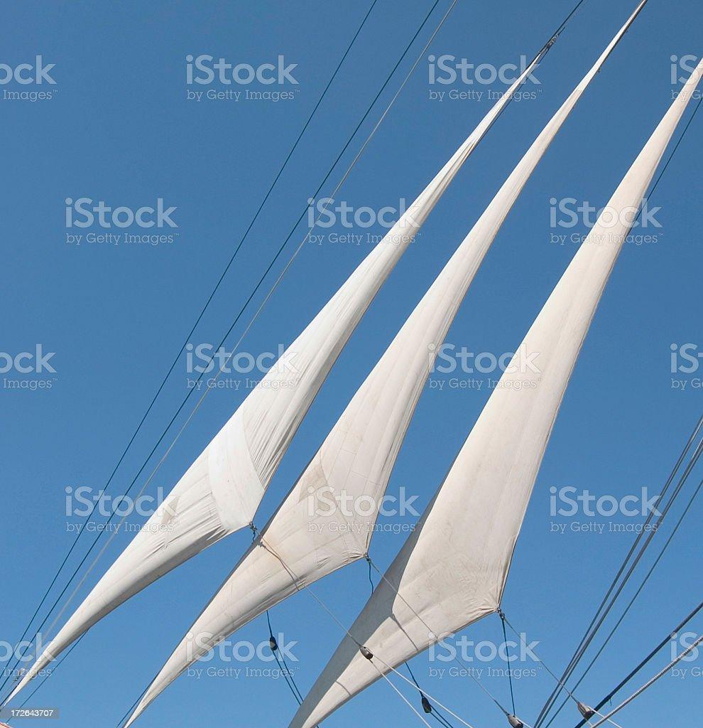 Three Sails royalty-free stock photo