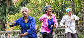 Three senior African American women at the park doing Tai Chi exercises.  Focus is on the women wearing pink and blue.