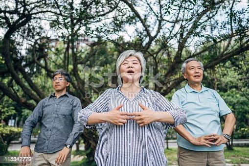 istock Three senior friends exercising in park 1153427791