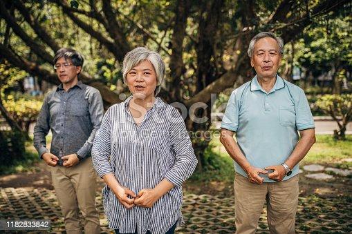 istock Three senior friends exercising in park 1182833842