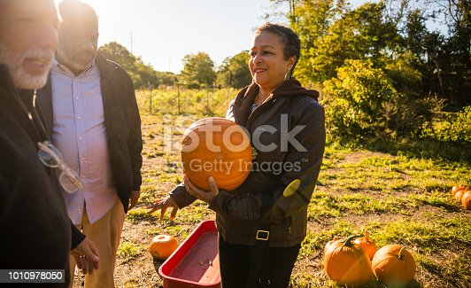 81711567 istock photo Three senior friends picking pumpkins at Pumpkin Patch 1010978050