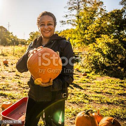 81711567 istock photo Three senior friends picking pumpkins at Pumpkin Patch 1010978156