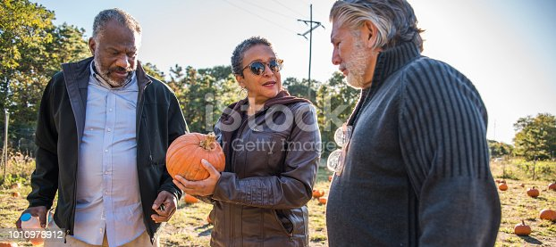 81711567 istock photo Three senior friends picking pumpkins at Pumpkin Patch 1010978912