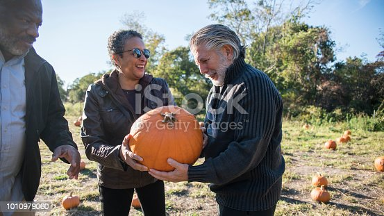 81711567 istock photo Three senior friends picking pumpkins at Pumpkin Patch 1010979060