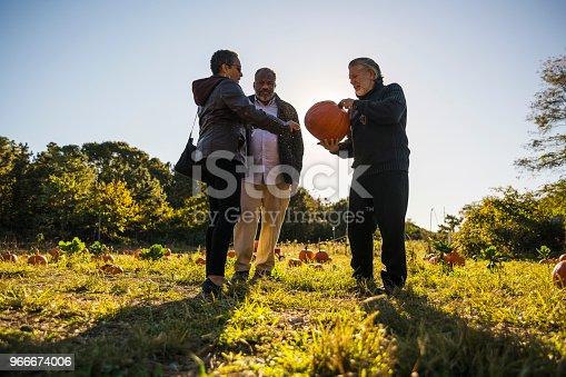 81711567 istock photo Three senior friends picking pumpkins at Pumpkin Patch 966674006