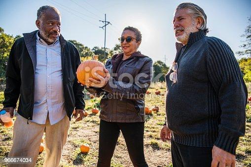 81711567 istock photo Three senior friends picking pumpkins at Pumpkin Patch 966674034