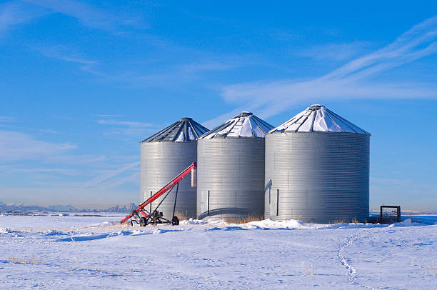 Three Silo's with auger stock photo