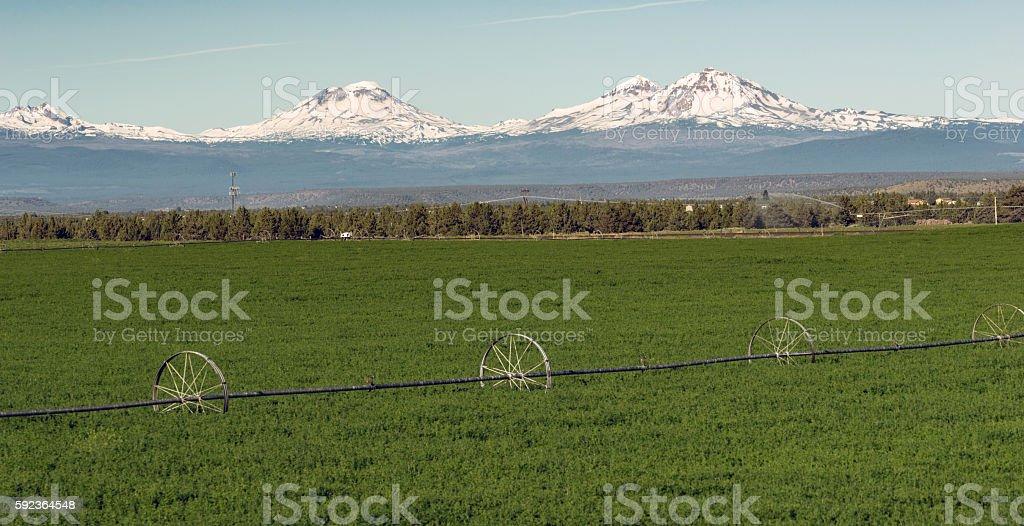 Three Sisters Stands Majestic Oregon Cascade Mountain Range stock photo