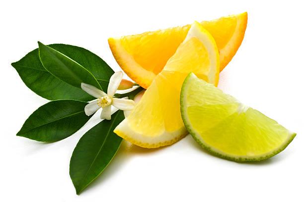 Zitrusfrucht – Foto