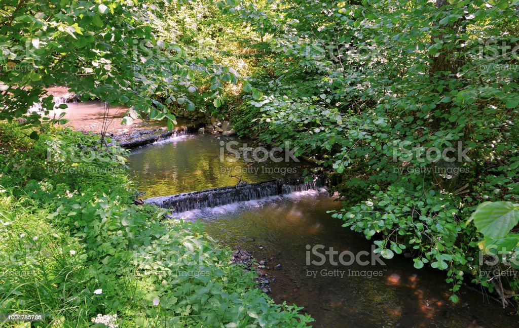 three small waterfalls in a river in the middle of the forest