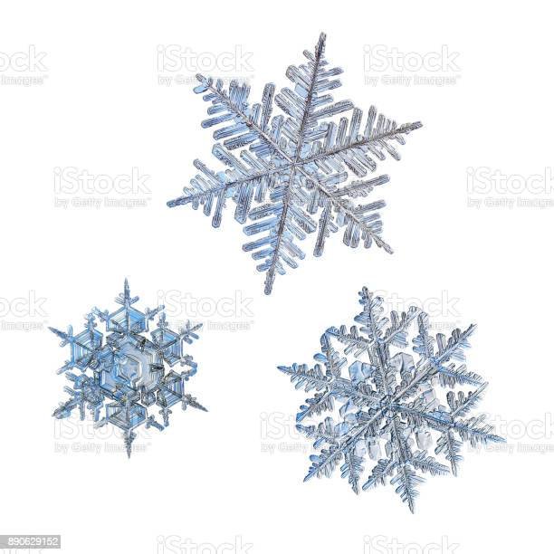 Three snowflakes isolated on white background picture id890629152?b=1&k=6&m=890629152&s=612x612&h=inocqhmfe bhbnpmgbjbkbltemft ywrqtaa46tnhuk=