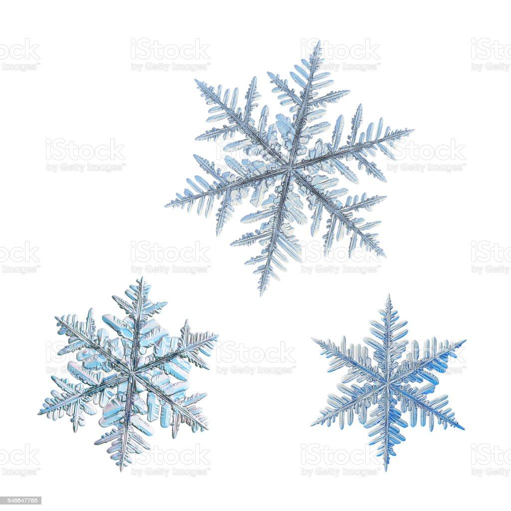 Three snowflakes isolated on white background stock photo