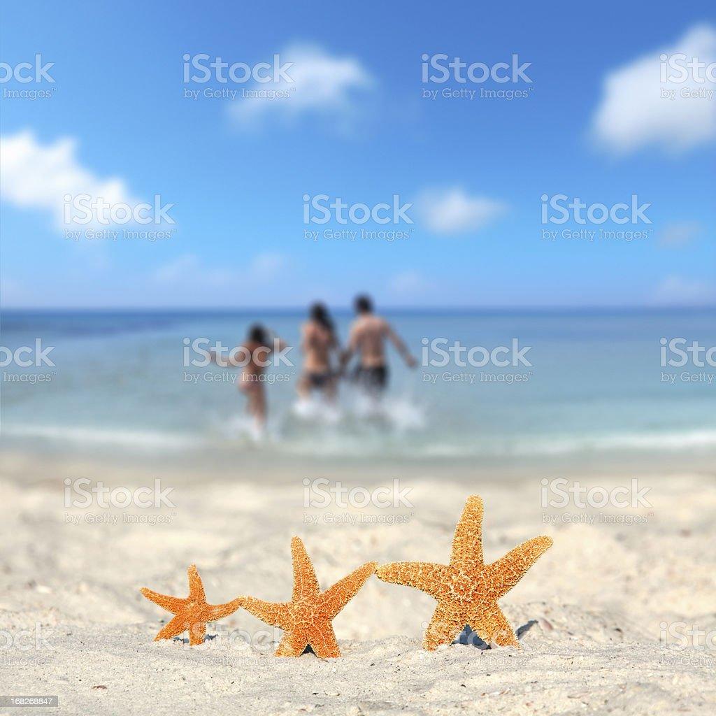 three starfish family vacation on beach stock photo