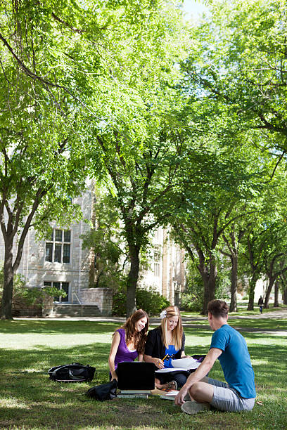 Three students studying outdoors with the university behind stock photo