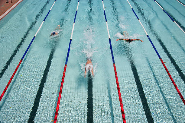 Three swimmers swimming in a pool stock photo