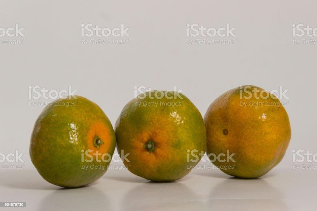 Three tangerines royalty-free stock photo