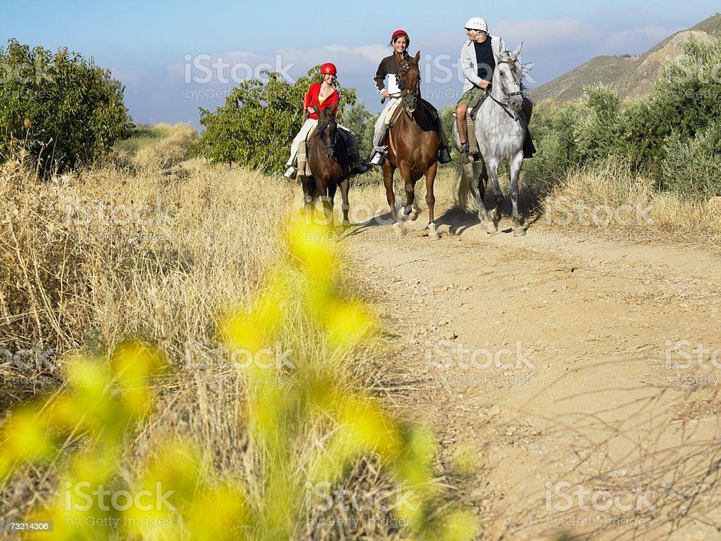 Three teenagers riding horses royalty-free stock photo