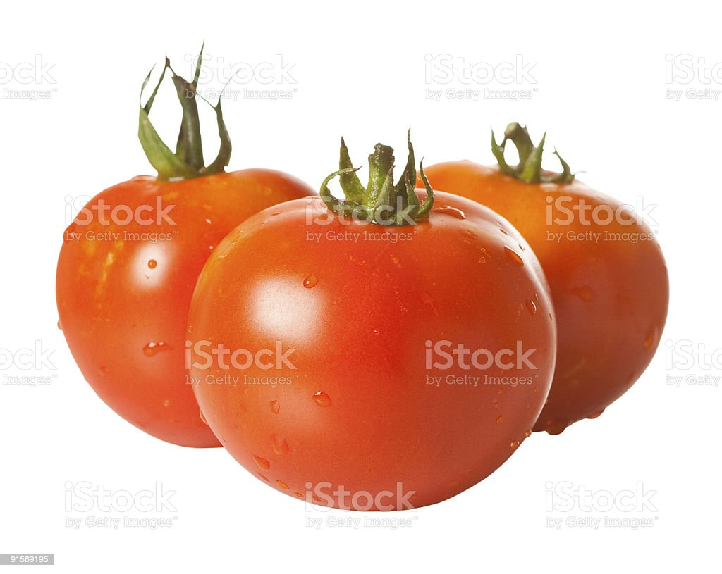 Three tomatoes isolated on white with clipping path stock photo