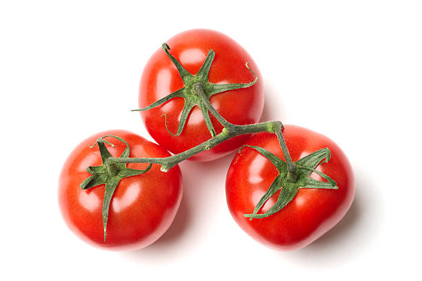 Three Tomatoes on Vine stock photo