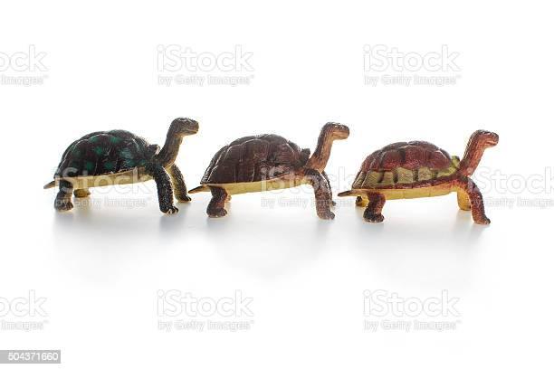 Three Toy Tortoise Stock Photo - Download Image Now