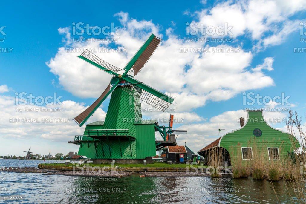 Três e moinhos de vento holandeses tradicionais da manhã - Foto de stock de Agricultura royalty-free