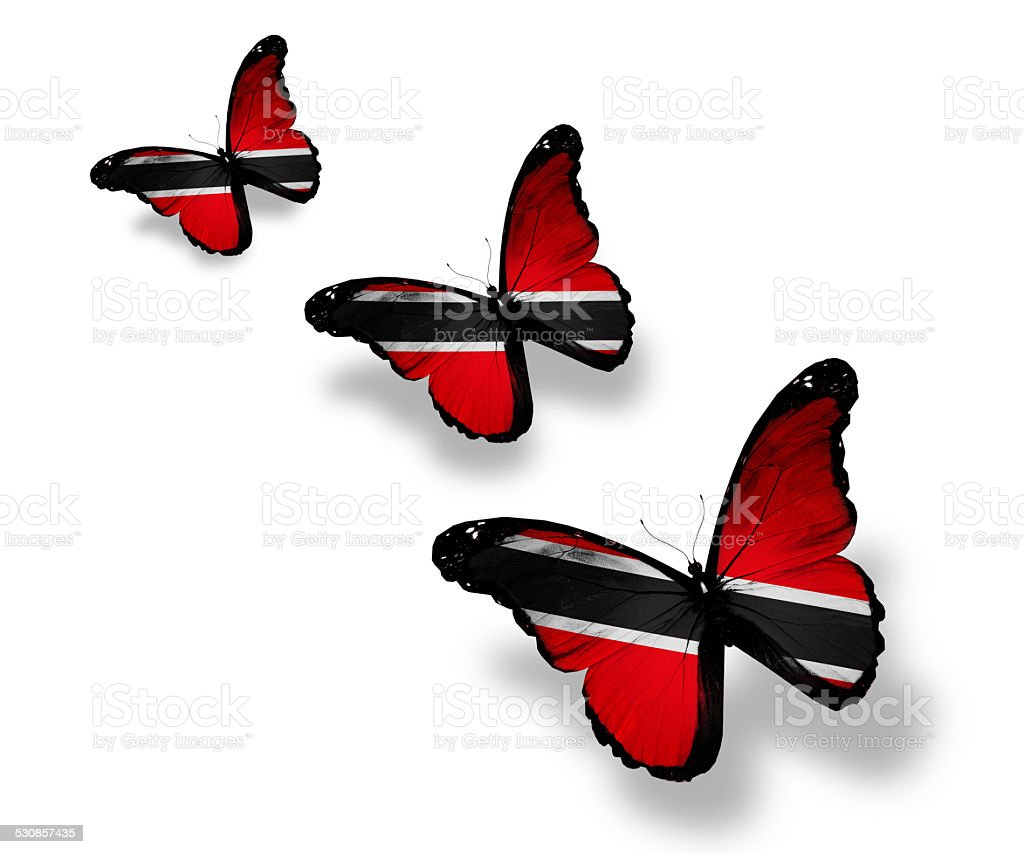 Three Trinidad and Tobago flag butterflies, isolated on white stock photo