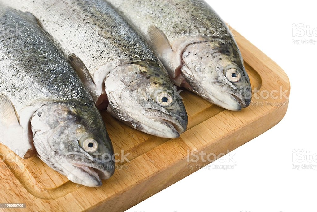 Three trout fish isolated royalty-free stock photo