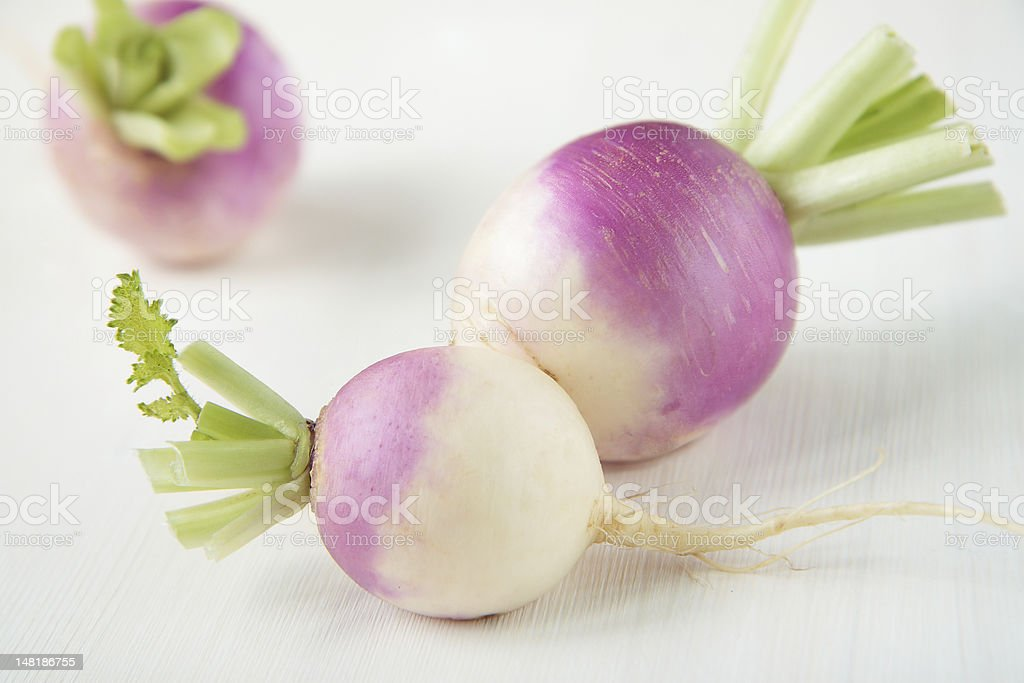 Three turnips with purple skin stock photo