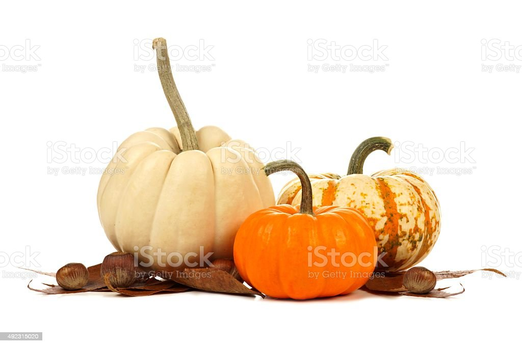 Three unique autumn pumpkins with leaves over white stock photo