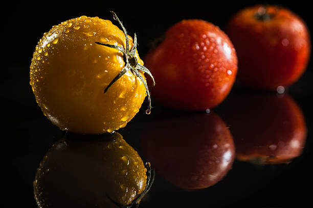 Three wet tomatoes on black with reflections stock photo