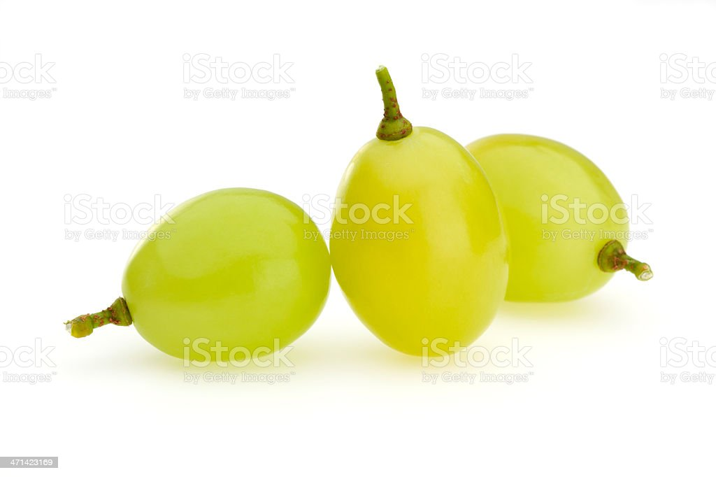 Three white grapes on a white background stock photo