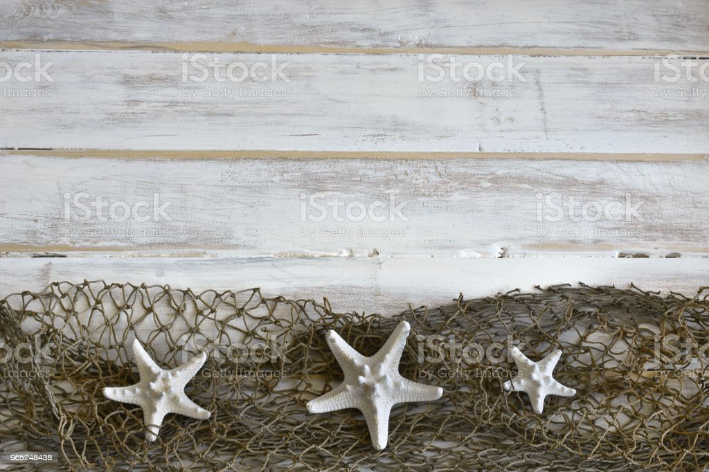Three White Star Fish Background zbiór zdjęć royalty-free