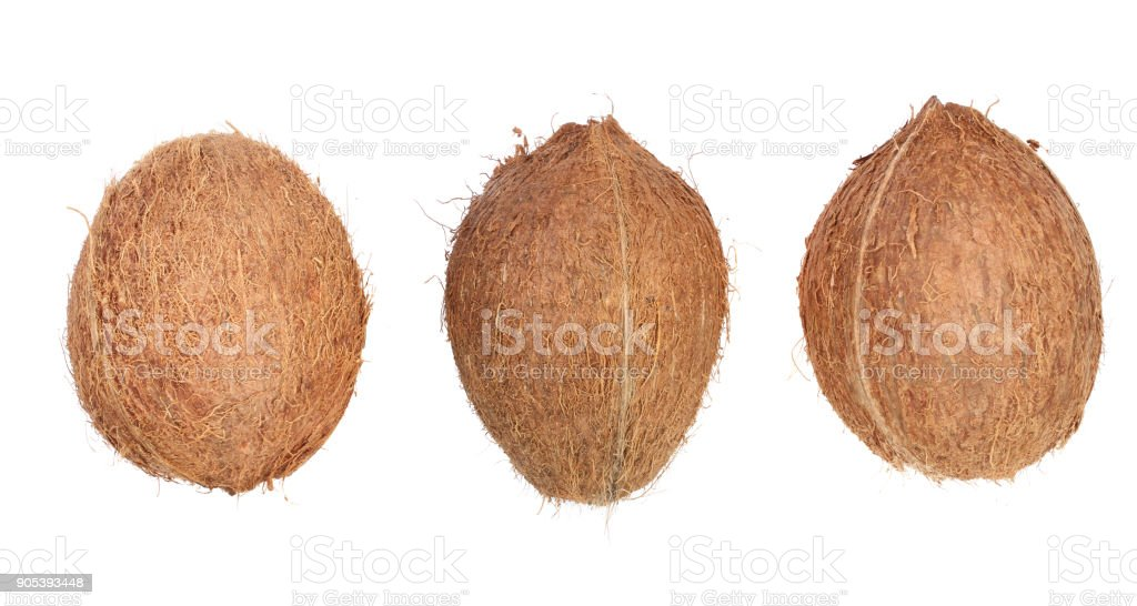 three whole coconut isolated on white background. Flat lay. Top view stock photo