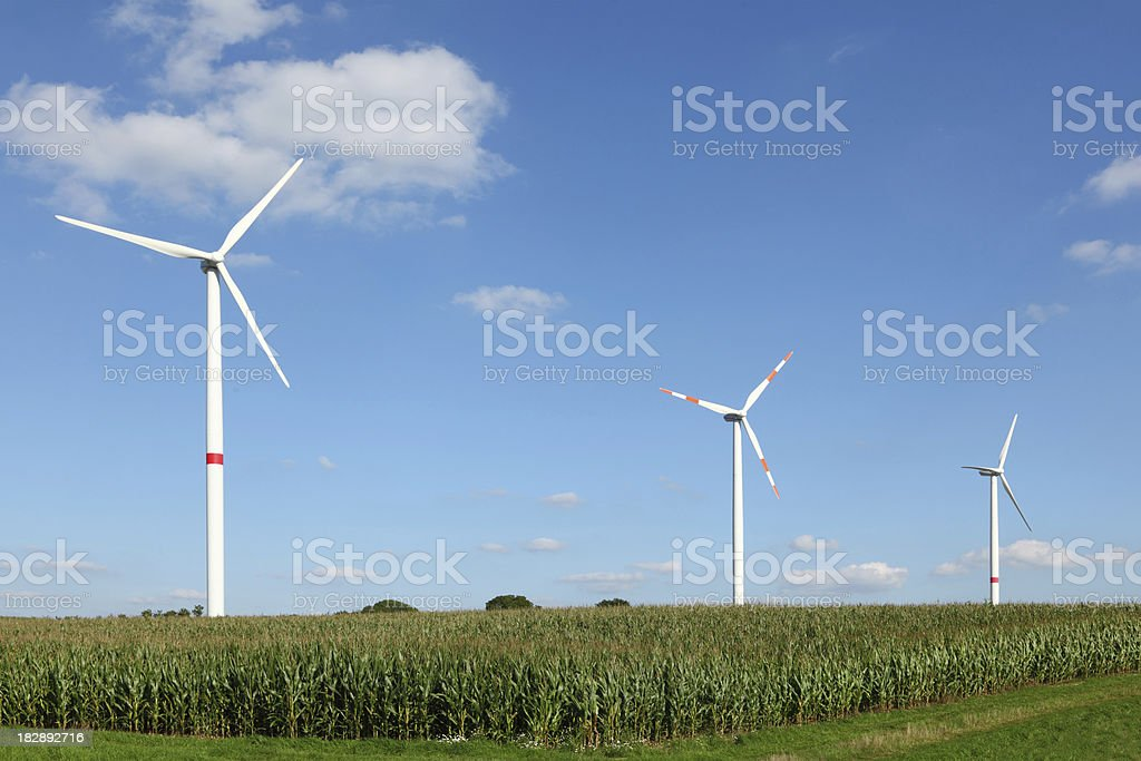 three wind power generators and corn field royalty-free stock photo