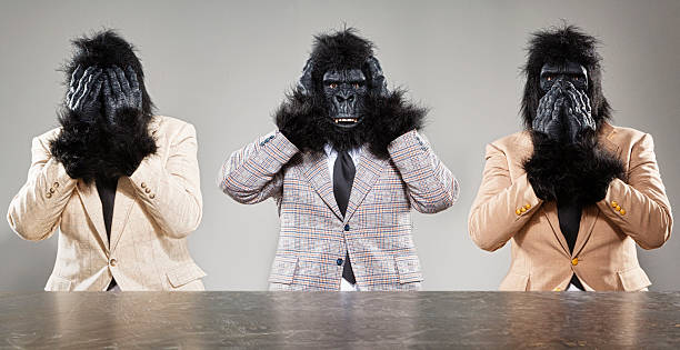 Three Wise Monkeys Three gorillas in retro suits showing the Three Wise Monkey poses. hear no evil stock pictures, royalty-free photos & images
