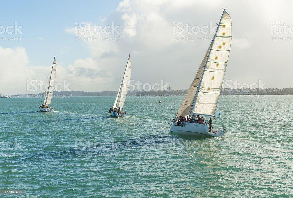 three yachts racing stock photo