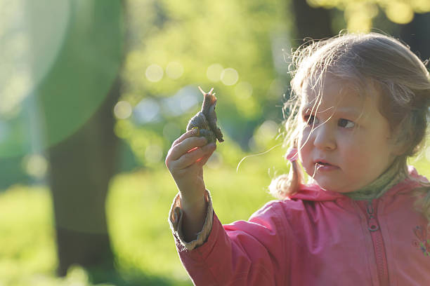 drei jahren vorschulkind mädchen mit haarzopf holding edible snail - vor zöpfe stock-fotos und bilder