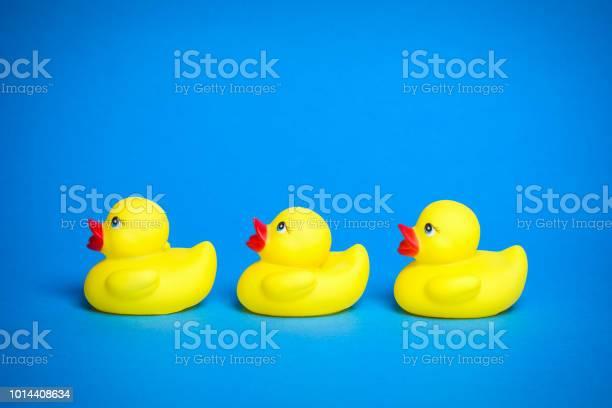 Photo of three yellow bath ducks